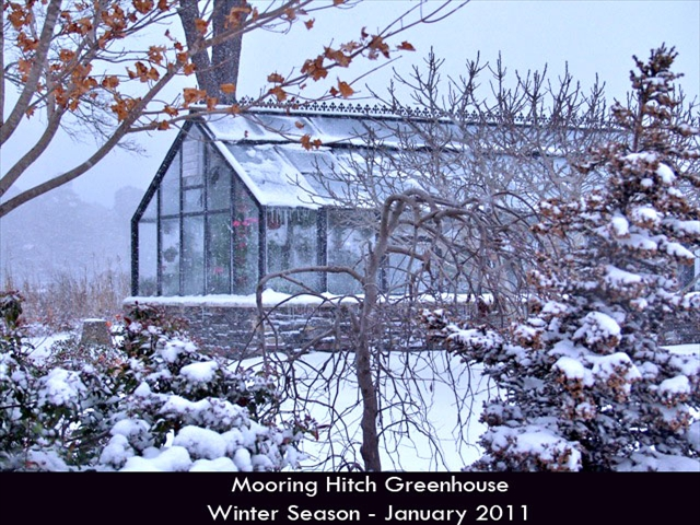 Hurricane-Greenhouse-1