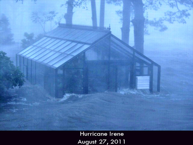 Hurricane-Greenhouse-5