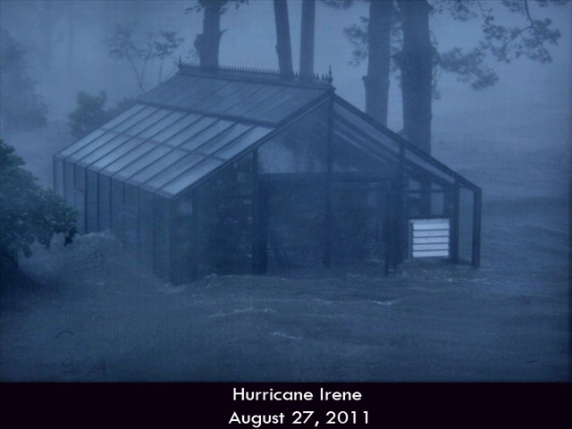 Hurricane-Greenhouse-6