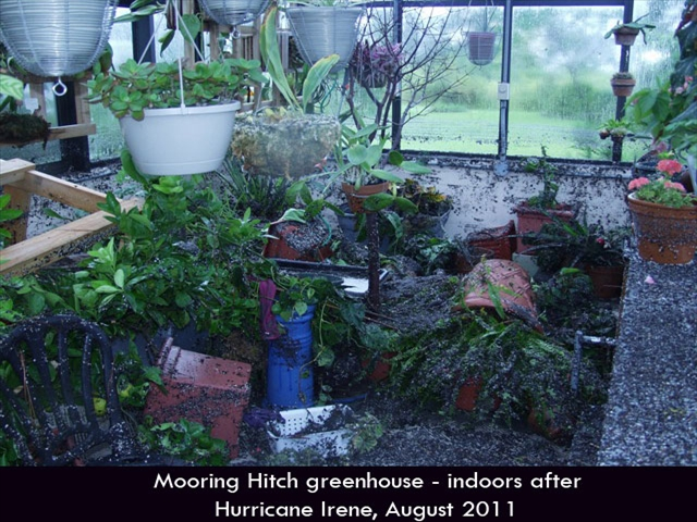 Hurricane-Greenhouse-7
